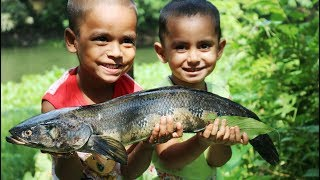 Fish Watery Curry Cooking By 3+ Years Baby Kids - Sneyha's Cooking Show of Great Snekehead Fish