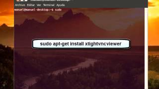 Instalar Servidor VNC en Linux