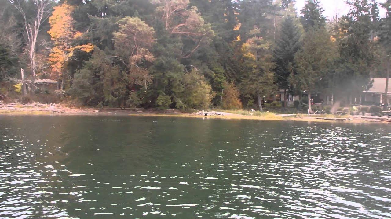 Puget sound salmon fishing stolen spinner youtube for Salmon fishing puget sound