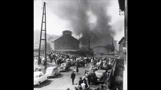 bois du cazier (8 août 1956)