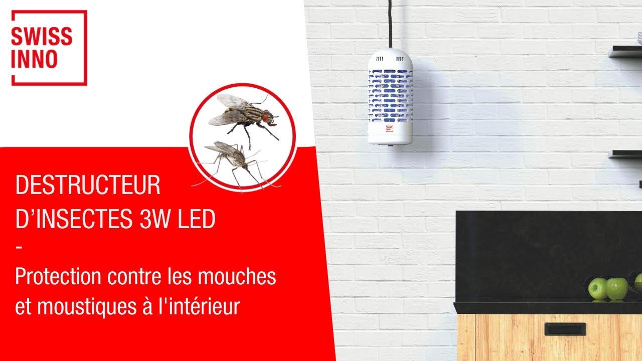 Destructeur d'Insectes 3W LED SWISSINNO