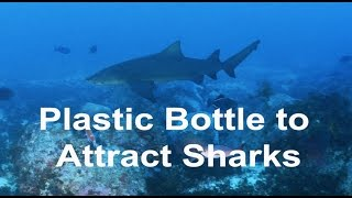 Video Plastic Bottle to Attract Sharks download MP3, 3GP, MP4, WEBM, AVI, FLV Agustus 2017