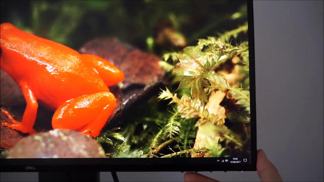 Dell U2518D Review | PC Monitors