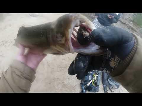 Wilsons Creek NC Trout Fishing