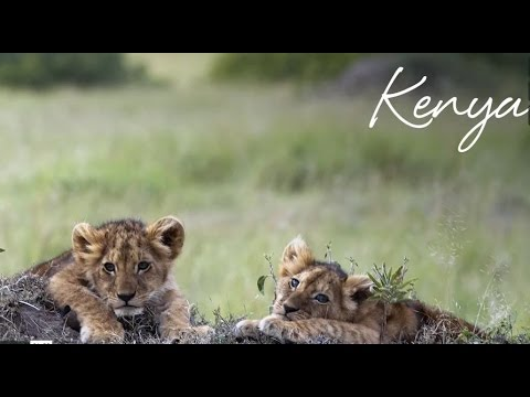 Abercrombie & Kent: Kenya Safari and Luxury Holiday