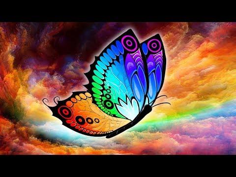 Metamorphosis ~ Embrace your Transformation