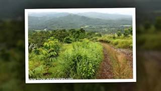Attractive Lots and agricultural lands in the Philippines - a high return investment for your future