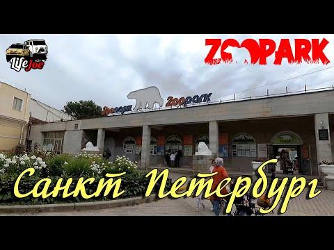 Зоопарк Санкт Петербург на Горьковской. Видео обзор