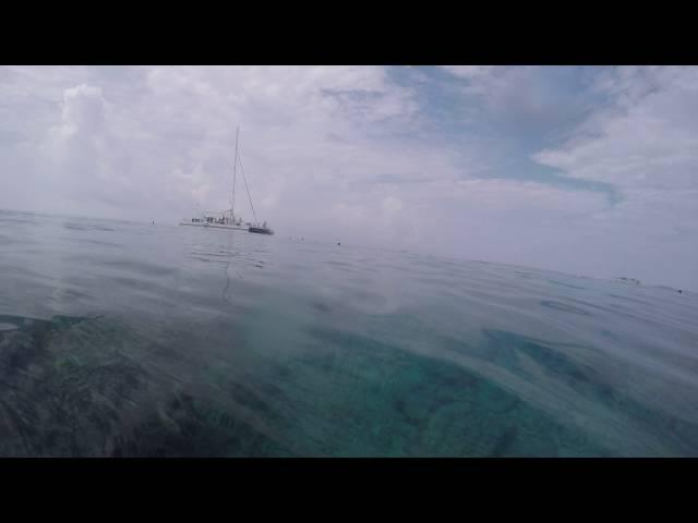 Jim snorkel trip