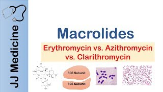 Macrolides | Bacterial Targets, Mechanism of Action, Adverse Effects