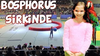 Bosphorus Sirki Gösterilerini Takipçilerimiz ile birlikte izledik eğlendik - Eğlenceli Çocuk Videosu