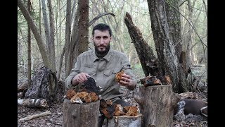Выживание в дикой природе I Питание и голодание
