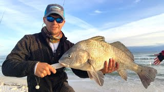 Best Way to Catch this Fish Surf Fishing