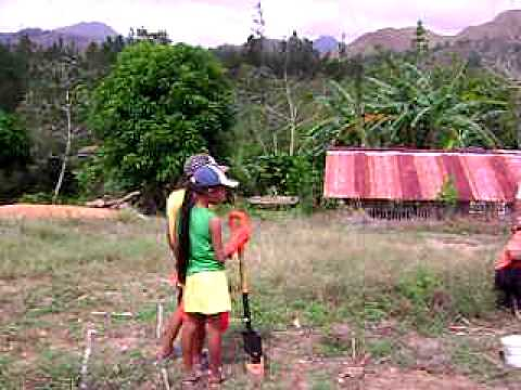 Panama  soil testing and biointensive garden creation.avi