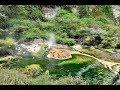 Waimangu and Waiotapu Volcanic Areas