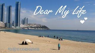10월의 마지막날#해운대#동백섬#구름다리#인어상#걷기#…
