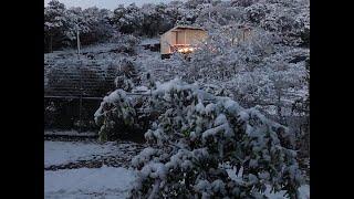 Snow in San Antonio on KENS 5 Eyewitness News at 10