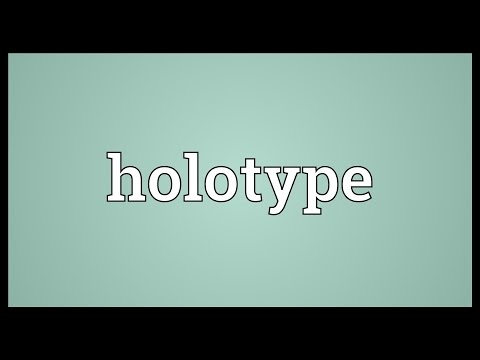 Holotype Meaning