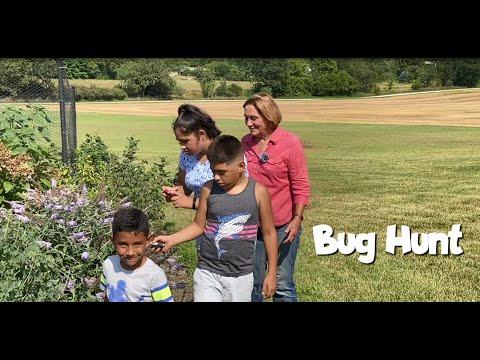 Young gardener activities – bug hunt
