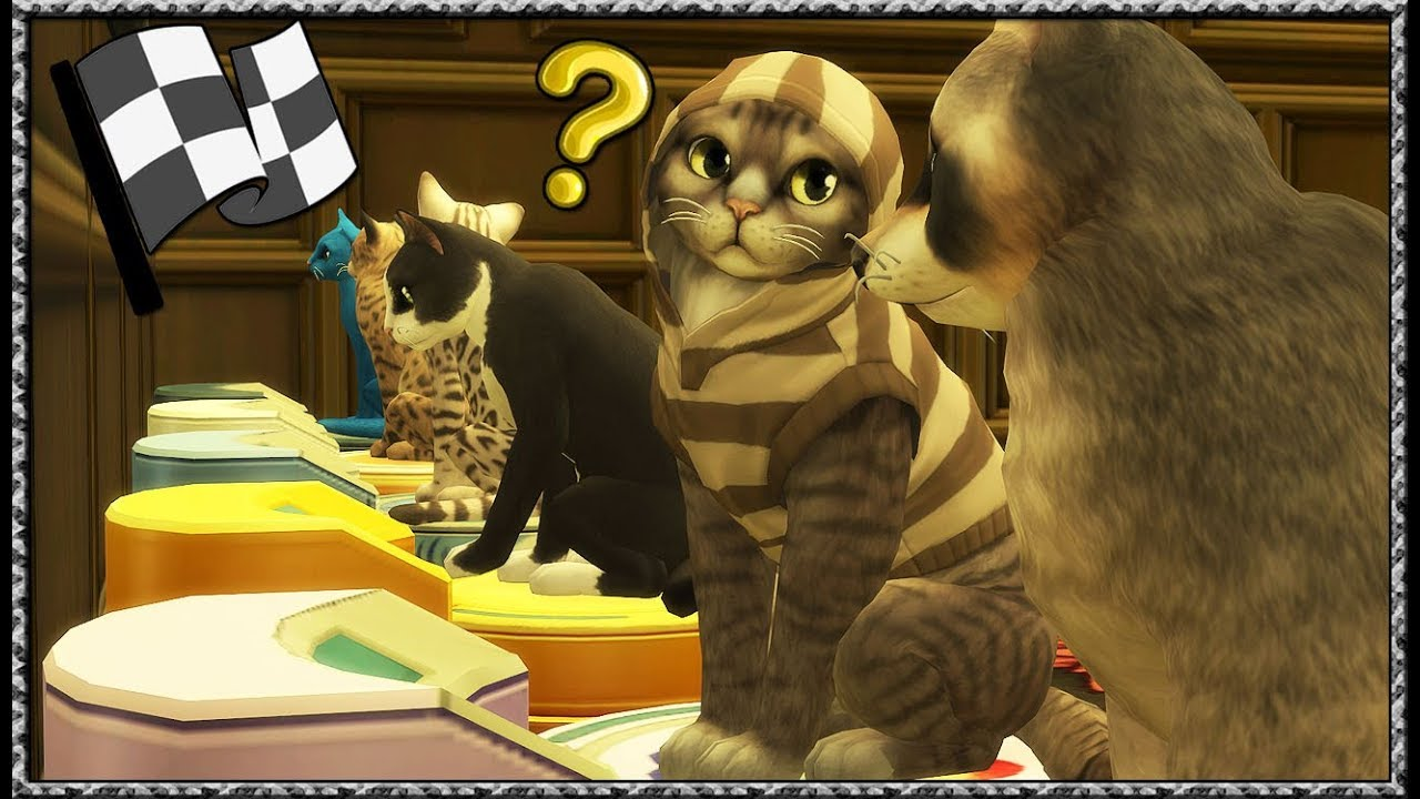 Sims  Cats And Dogs Roomba