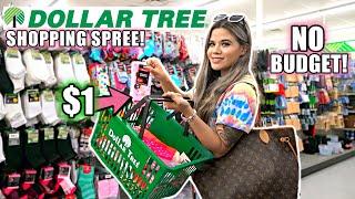 I HIT THE JACKPOT AT DOLLAR TREE! GIRLY NO BUDGET SHOPPING SPREE!