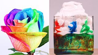 5 Amazingly Cool DIY Science Experiments | Easy & Fun Science Ideas By HooplaKidz Lab
