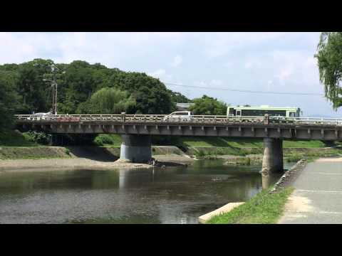 Solitary walk(散歩)[A subtitle projected on a screen]:Romantic Area Kyoto 京の都ぶらぶら放浪記