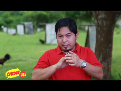CHICKEN TALK: MARCUS ANTONIO DEL ROSARIO