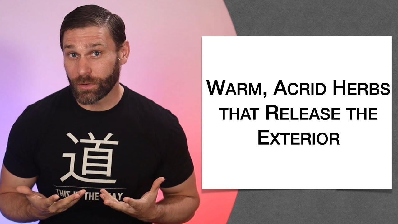 Download 🌿 Warm Acrid Herbs that Release the Exterior - Extended Live Lecture