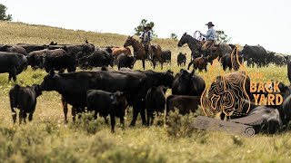 Double Rafter Cattle Drives | An Authentic 1880s Cattle Drive | (The Backyard Season Finale Teaser)