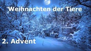 Eine Weihnachtsgeschichte   2. Advent   WEIHNACHTS-SPEZIAL 2015   Learn German HD♫