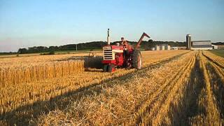 IH 560 with IH 80 Pull-Type Combine Harvesting Wheat