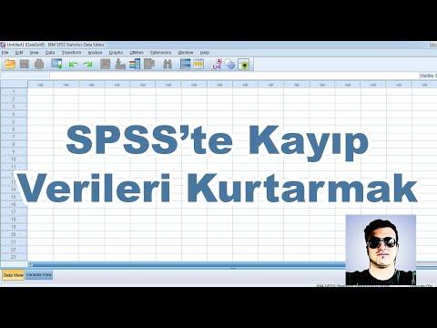 SPSS İpuçları #7 | Output'ta Kaybolan Verileri Kurtarmak