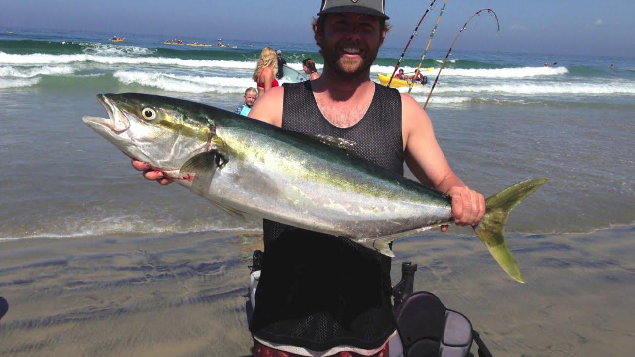 La jolla yellowtail kayak fishing 9 14 14 youtube for La jolla fishing