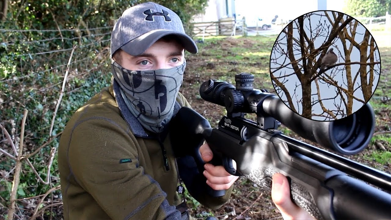 The Airgun Show – Hunting double bill, pigeons, doves & squirrels, PLUS new  gear IWA 2019