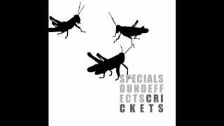 Sound FX - Crickets