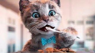 ПРИКЛЮЧЕНИЯ МАЛЕНЬКОГО КОТЕНКА В ШКОЛЕ - Игровой развивающий мультик для детей! мульт про котят.