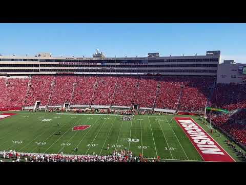 Build Me Up Buttercup - Camp Randall