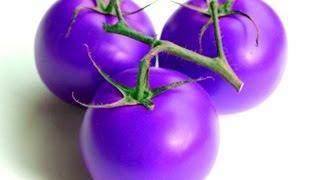 Взошли томаты: фитоус и китайское фиолетовое чудо.(, 2016-03-27T16:04:20.000Z)