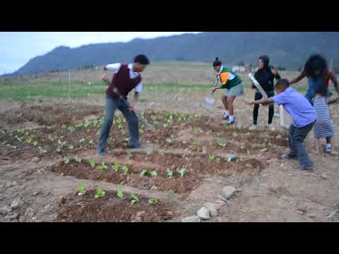 Rural Farm Children and Youth growing food to help their Judo fundraising