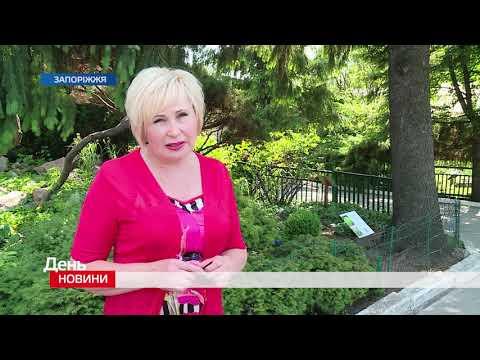 Телеканал TV5: День. Новини TV5. Випуск 17-00 за 20.06.2019