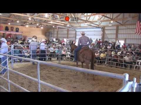 Jake Clark Mule Days Auction 6/15/2014