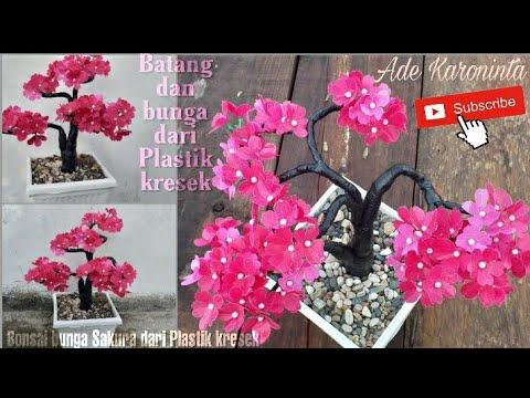 Cara Membuat Bonsai Bunga Sakura Dari Plastik Kresek How To Make Cherry Blossoms From Plasticbags Youtube