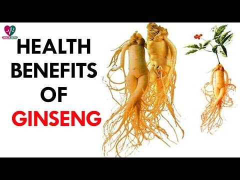 Top 5 Health Benefits of Ginseng - Health Sutra