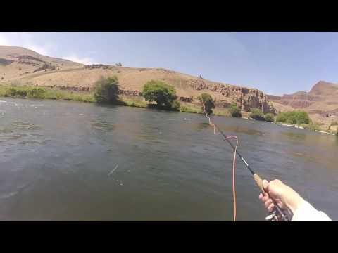 Memorial Day Fly Fishing Memories On The Deschutes River