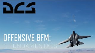 DCS World BFM - Offensive BFM 1 - Fundamentals