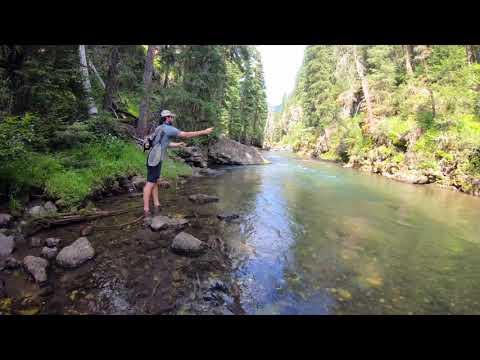 Fly Fishing In Yellowstone on Soda Butte Creek   HD 1080p