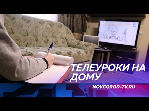 В Новгородской области прошел первый телеурок для учеников с 5 по 11 класс