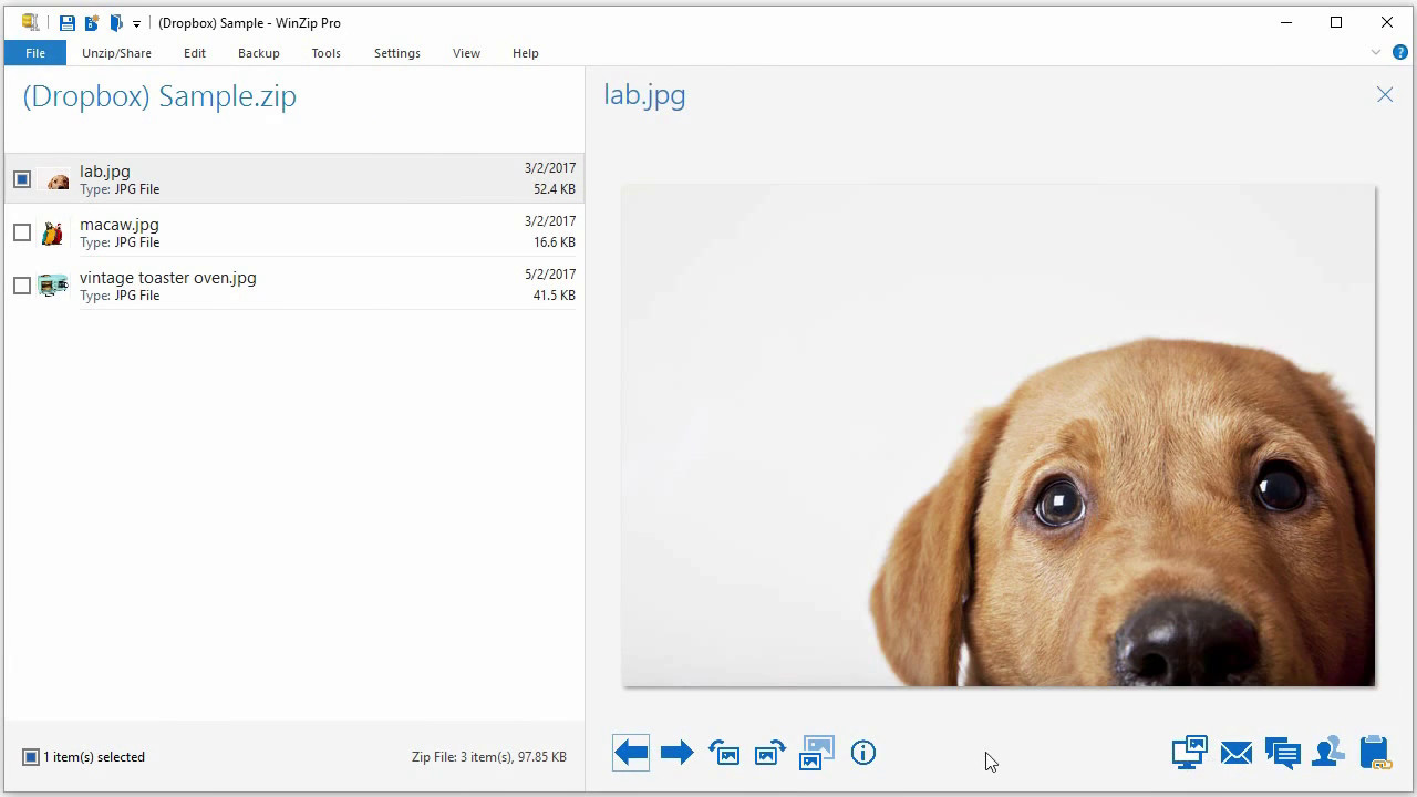 How to convert a jpg from a zip file to a pdf in WinZip
