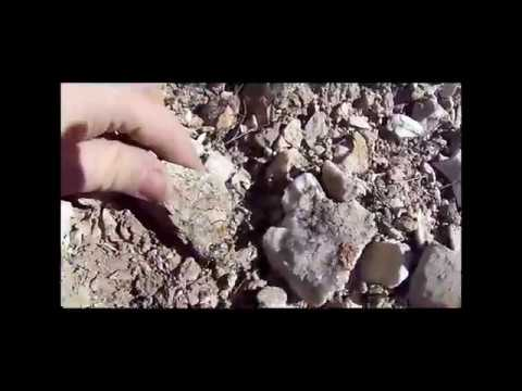 Dixie Valley Mining Tour (in NW Nevada), Part 11